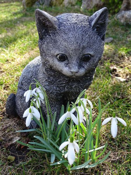 Steinkatze Kitty