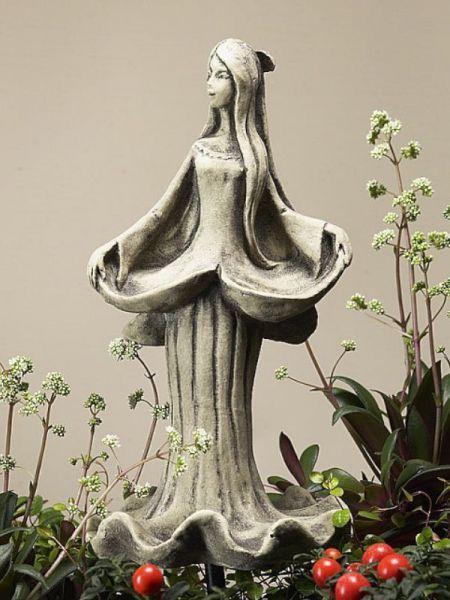 Blütentänzerin Glockenrebe