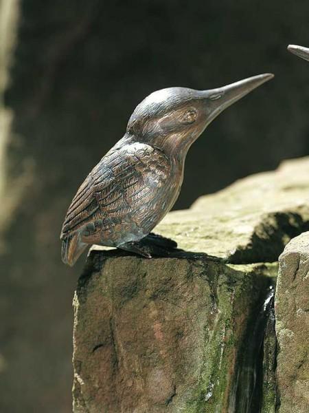 Eisvogel Bronze
