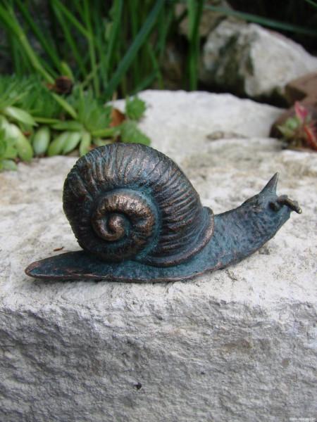 Schnecke Bronze