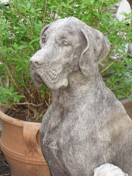 Dogge lebensgroß - realistische Hundskulptur aus Stein