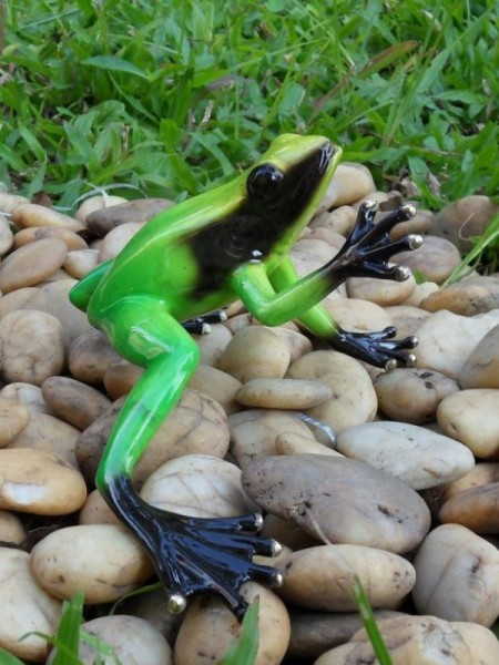 Bronze Frosch Regenwald grün