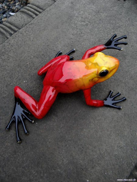 Regenwaldfrosch Bronze