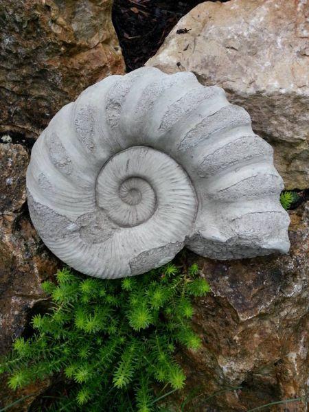 Ammonit aus englischem Steinguss