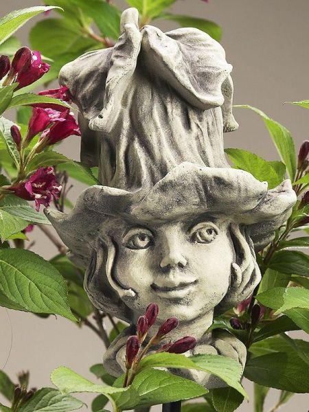 Blumenkind Glockenrebe