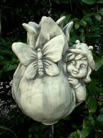 Sprössling Tulpe