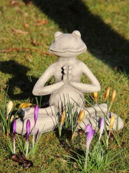 Yogafrosch Lotus