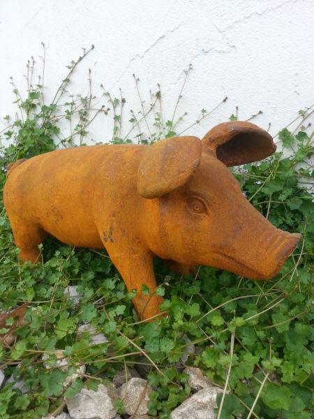 Schwein Gusseisen