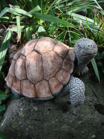 Schildkröte Gartenfigur