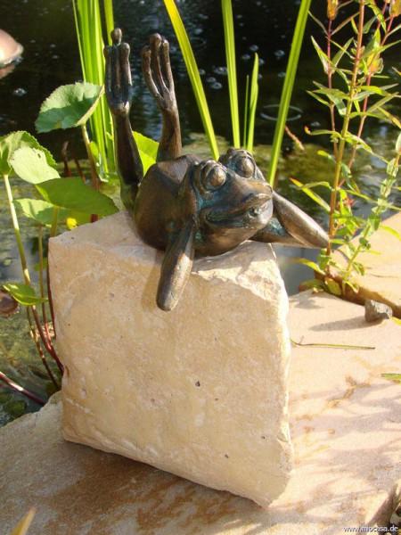 Bronzefrosch Tom