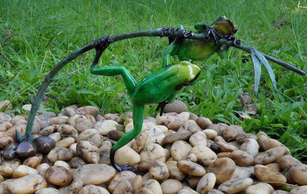 Regenwald-Frosch grün auf Zweig
