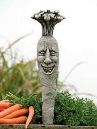 Gemüse Karotta