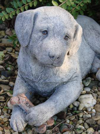 Labrador - Hund mit Knochen