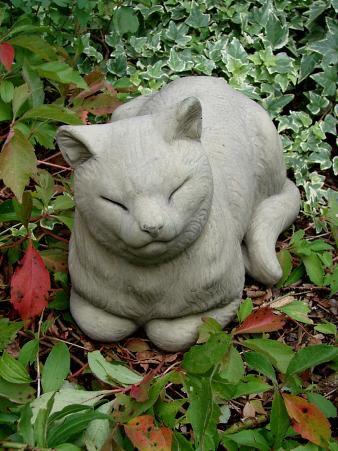 Dösende Katze aus England