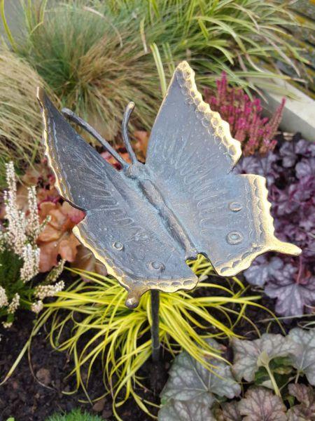Rottenecker Bronze Schmetterling
